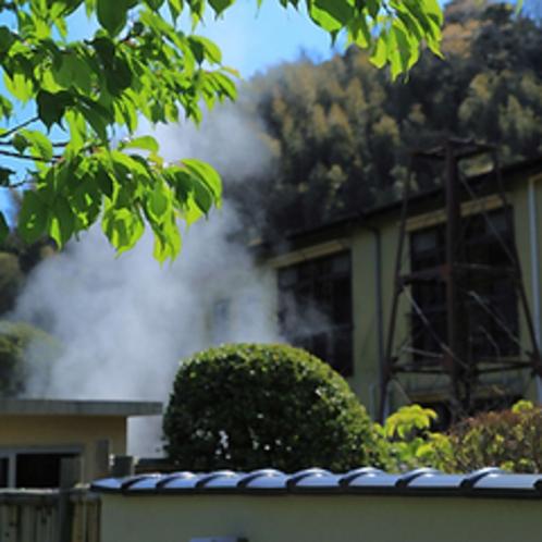 ■河内屋と湯煙