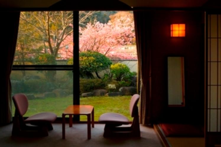 お部屋〜お花見