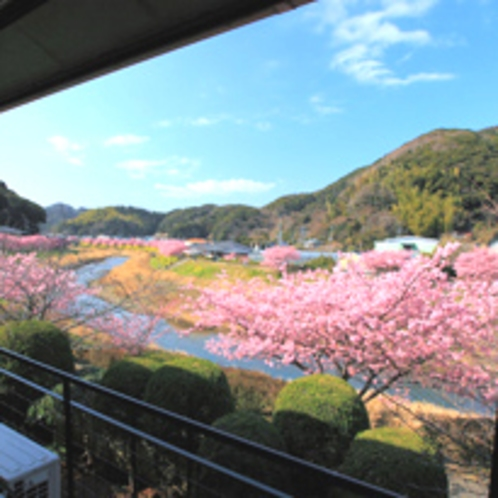 ■2階からお花見!