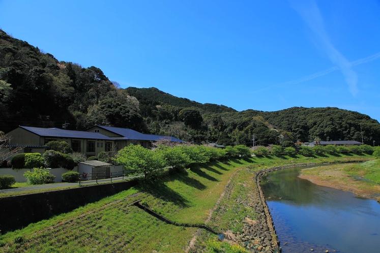 青野川から河内屋