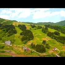 - Green Season -石打丸山スキー場