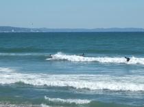 サーフィン 一例