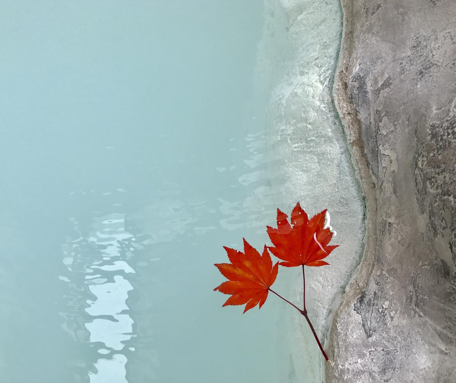 秋の貸切り露天風呂