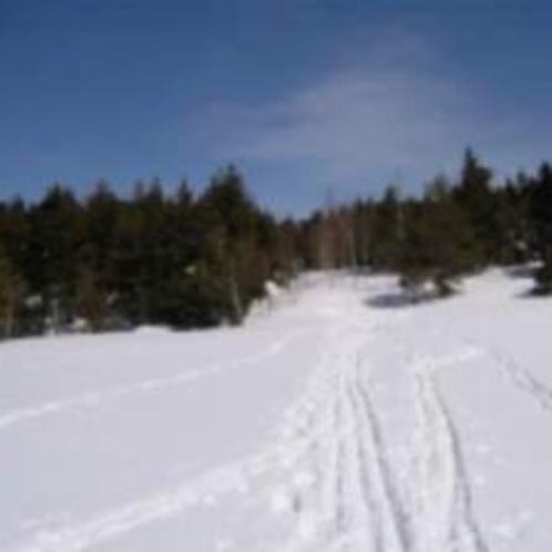 スノーシュウトレッキングのスタート地点