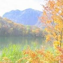 丸池の紅葉 例年10月10日前後が見頃となります
