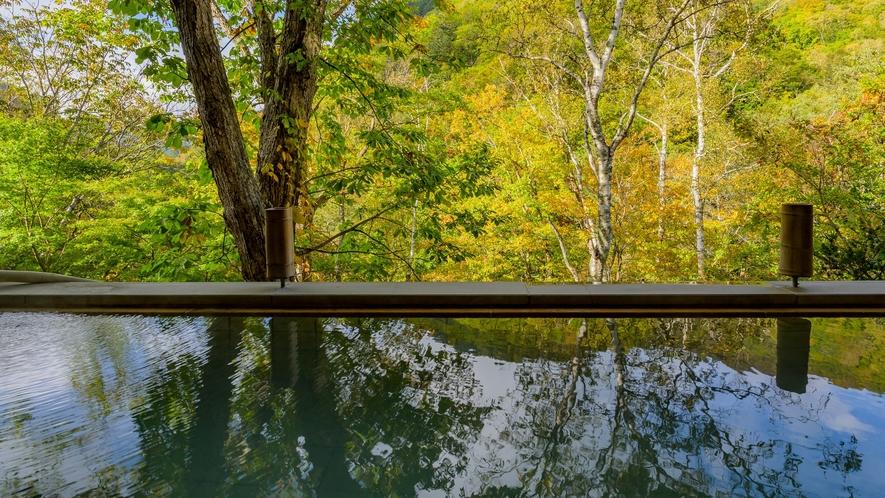 ■湯面に映る鮮やかな紅葉をお楽しみいただけます