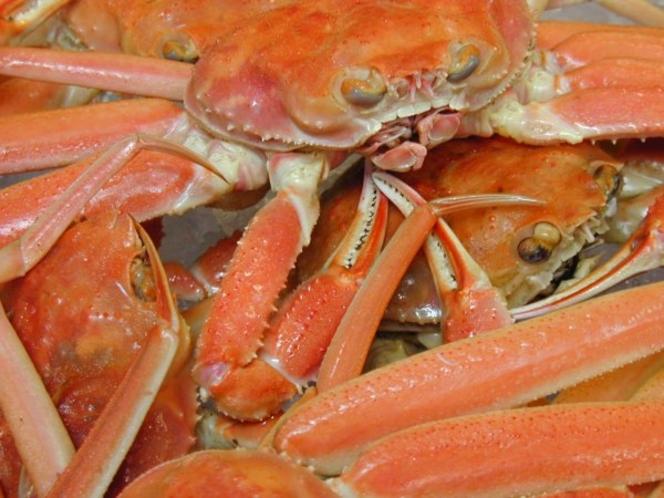 ゆでたズワイ蟹