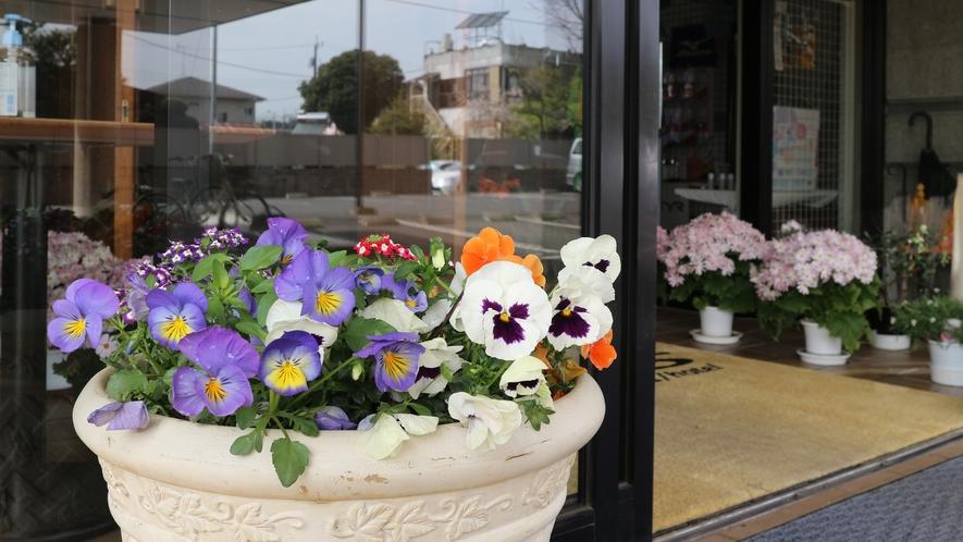 *【館内入り口】館内外に季節のお花を飾っています。お花でほっと一息癒されてください。