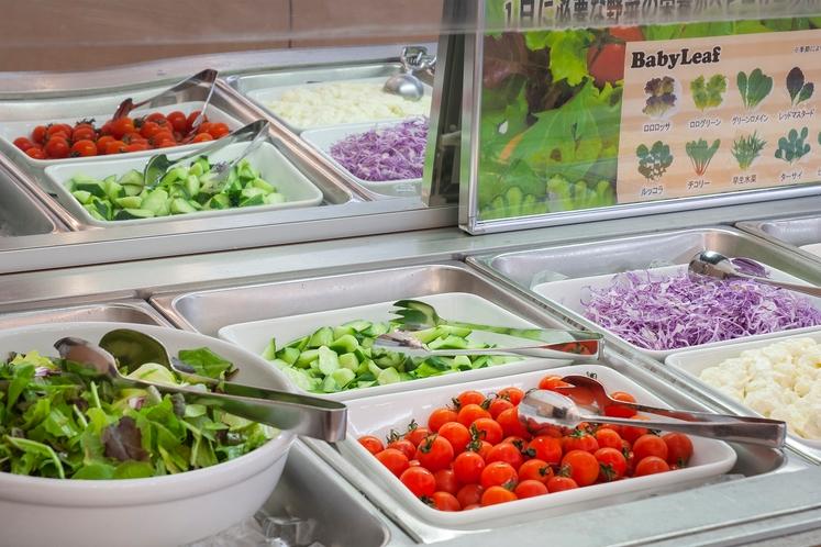 野菜も豊富な朝食バイキング