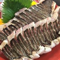 海×肉フェス2019「本日の鮮魚・長崎五島列島のイサキ炙り」
