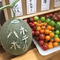 ベジビュッフェの新鮮お野菜は、地元あわらの契約農家の皆さんにお届け頂いております。