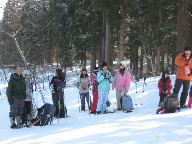 雪の中みんなで散歩
