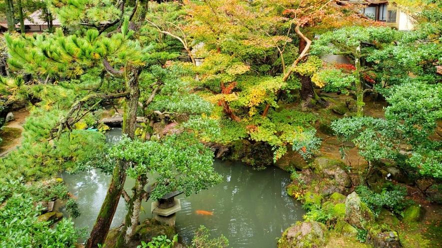 四季折々の庭園のうつろいをお楽しみください。