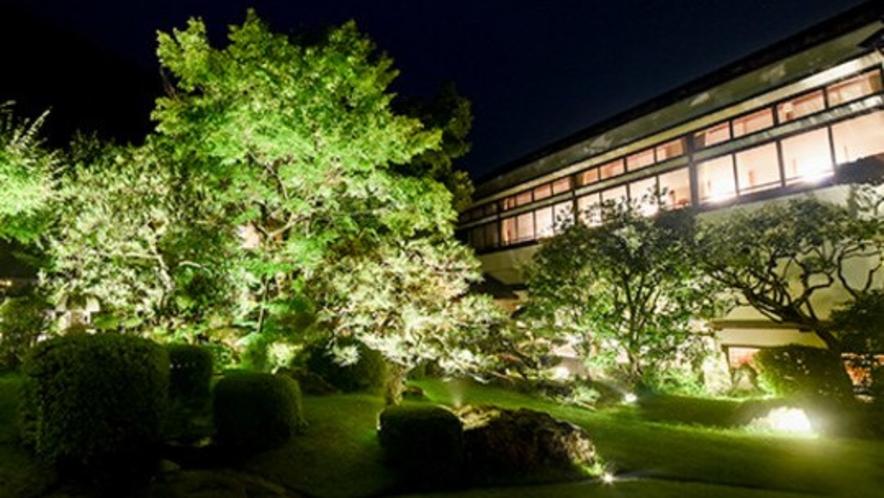 【夜の庭園ライトアップ】