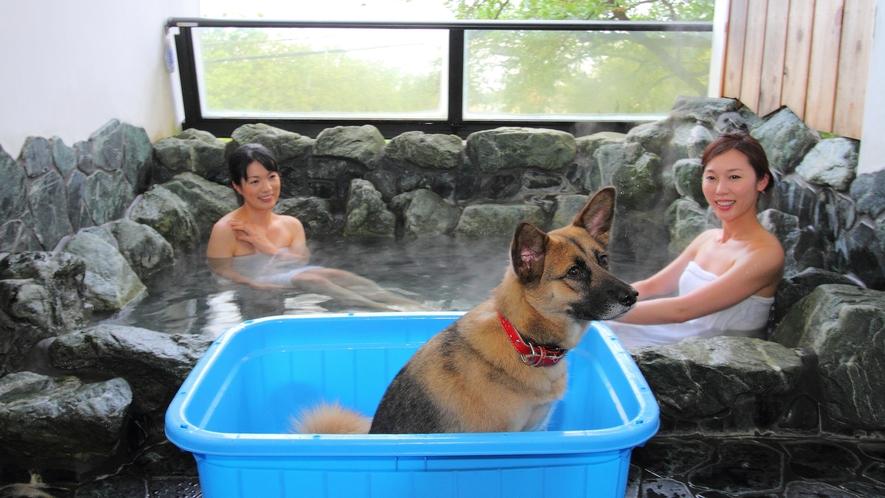 【貸切風呂一例】和風露天風呂