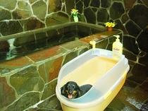 内風呂(貸切風呂)