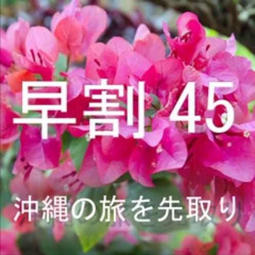 沖縄の旅を先取り!45日前迄の予約!