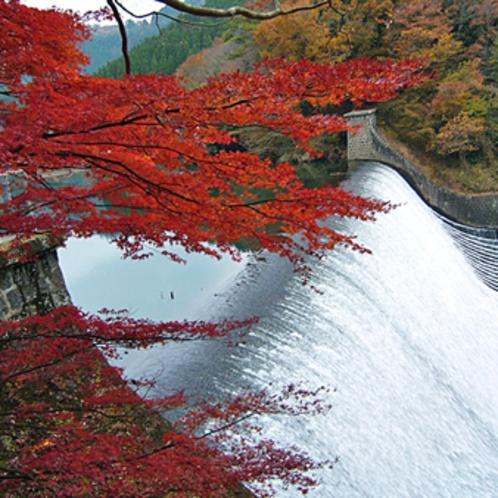 白水ダムの紅葉