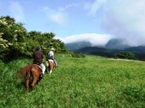 早朝乗馬体験
