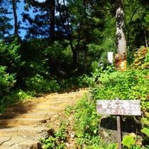 *【周辺】「日本の滝百選」に選ばれている苗名滝へのアクセスも便利です。