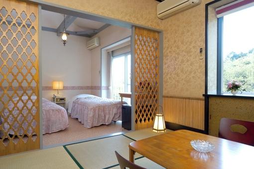 ロフトとバルコニー付きでペットが駆け回れる広い15畳の和洋室