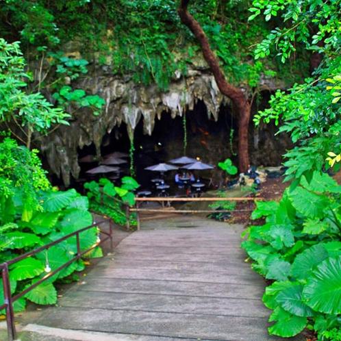 【車で10分】ガンガラーの谷 数十万年前までは鍾乳洞だった森/ツアーやケイブカフェが人気