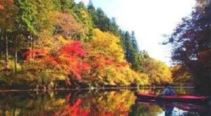 愛郷ぐんま【美しき秋の世界へ★紅葉の見える部屋】お部屋食のおこもりプラン◇人気NO1の一心会席