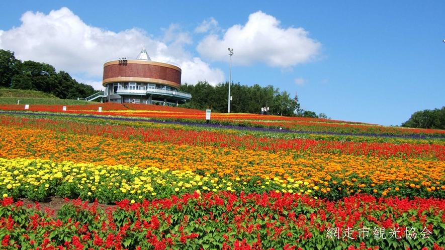 *[フラワーガーデン はな・てんと]当館より車で約7分。3.5haの斜面いっぱいに広がる花々は壮大