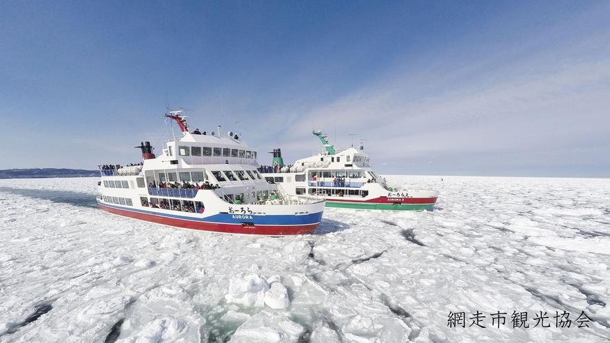 *[流氷観光砕氷船 おーろら]オホーツクならではの流氷を見に行きませんか?(例年1月頃より)