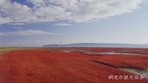 *[能取湖]当館より車で約17分。日本一の規模を誇るサンゴ草の群生地。例年見頃は9月中旬~下旬