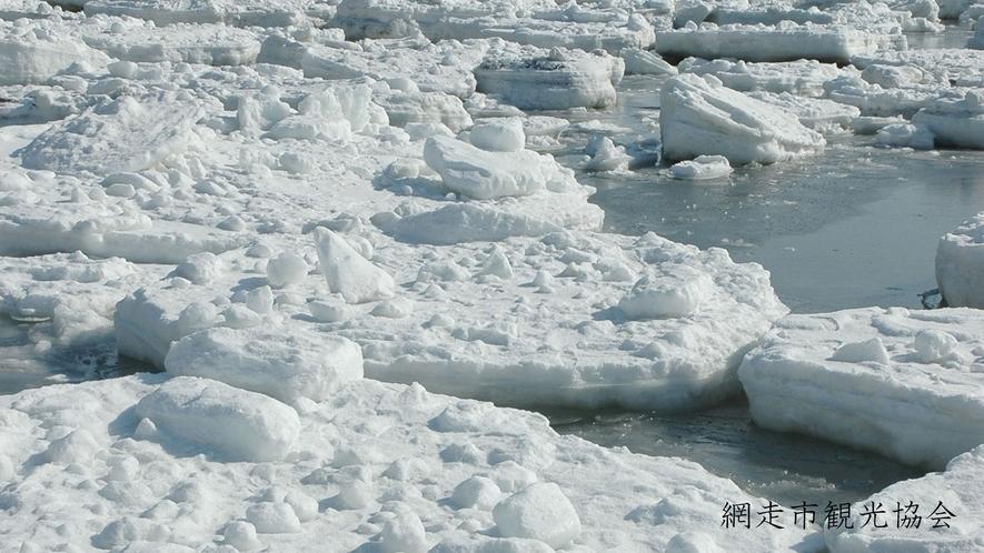 *[風景/冬]流氷。運が良ければアザラシなどの海獣類や鳥類に出会えるかも?!