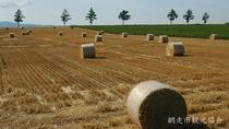 *[風景/夏]女満別の麦稈ロール。畑に転がる北海道ならではの風景をお楽しみいただけます(7月下旬頃)