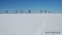 *[風景/冬]雪原に残る小動物の足跡