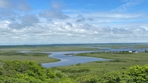 緑一色の霧多布湿原(湿原や花など道東周辺のガイドも行っております)