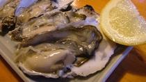 北海道 道東産の牡蠣