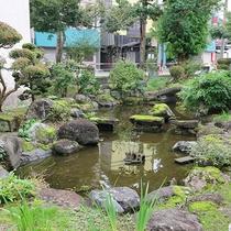 *館内一例/緑に囲まれた目に優しい庭。※一部のお部屋からの眺望になります。