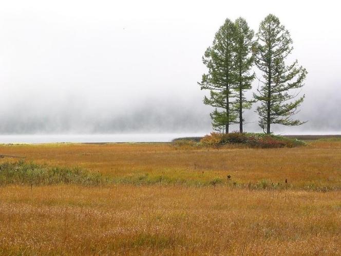 幻想的な景観と神秘的な大自然の美しさに出会える秋の尾瀬