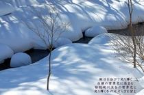 尾瀬野より望む冬の檜枝岐川渓谷