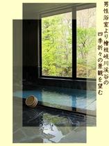 春の男性浴室より清流桧枝岐川渓谷の鮮やかな新緑の景観を望む