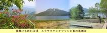 雪解けも終わる頃の春の尾瀬沼とムラサキヤシオツツジ