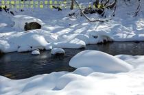 清流檜枝岐川渓谷の雪景色の中で、朝日を浴びて光り輝く清らかな、せせらぎを望む