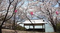 城山桜公園★「二十四の瞳」や「Nのために」のロケ地