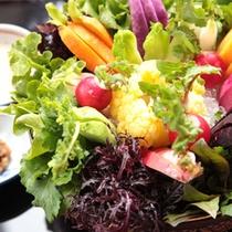 「壱岐の恵みサラダ」