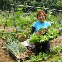 女将の農園で愛情を込めて育てられた旬の野菜を召し上がれ♪