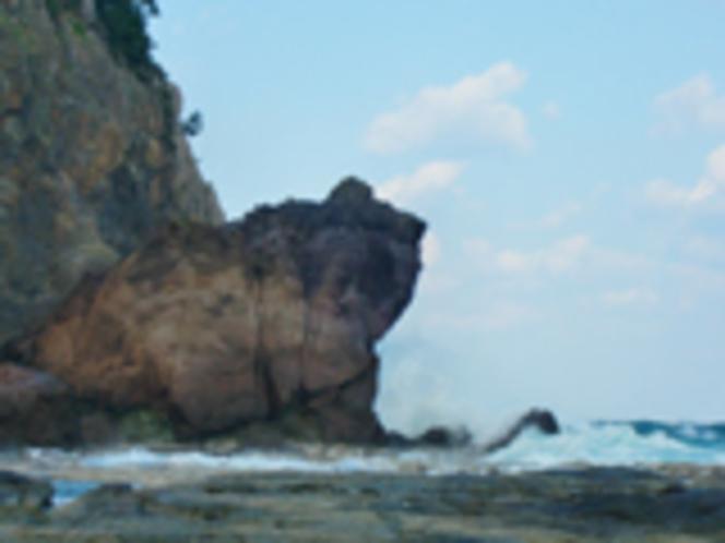 パワースポット かえる島