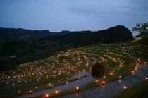 鴨川棚田の夜祭り「大山千枚田」 秋