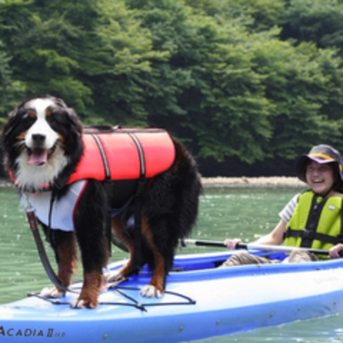 愛犬と一緒にカヌー体験も!(板室ダム湖、ホテルよりお車35分)