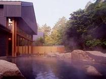 星野温泉トンボの湯