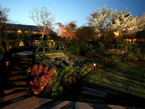 ガーデン桜