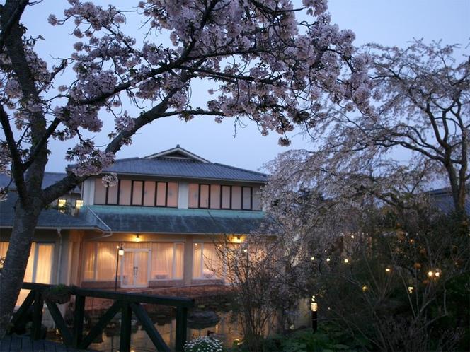 【ガーデン】春は桜が見頃。枝垂れ桜から八重桜まで、時期をずらしながらいろいろな桜を楽しめます。